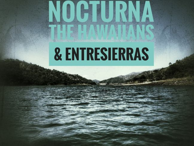 ¿Qué hacer en Marbella? Nocturna The Hawaiians SUP Center